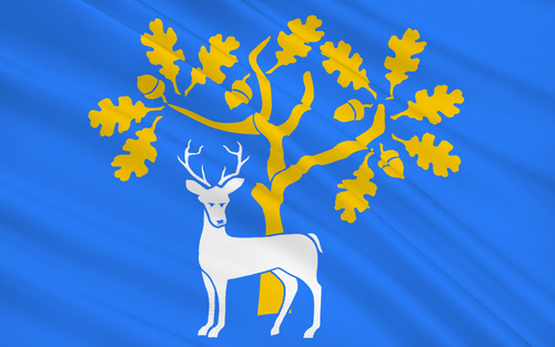 The County Flag of Berkshire