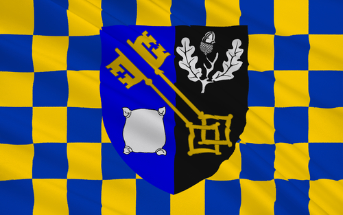 The County Flag of Surrey